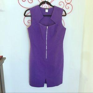 Fitted Zipper Dress Size 10